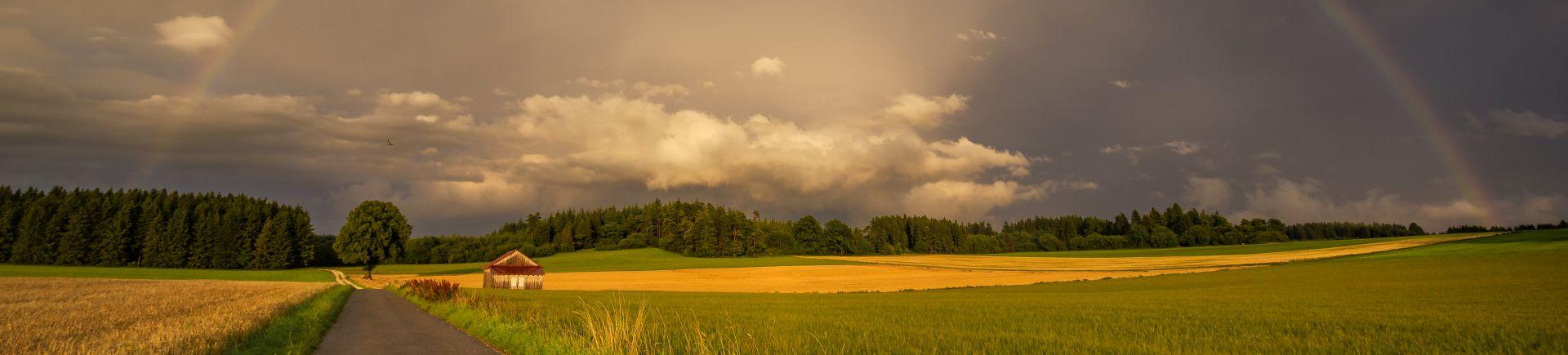 Wetter Gosbach